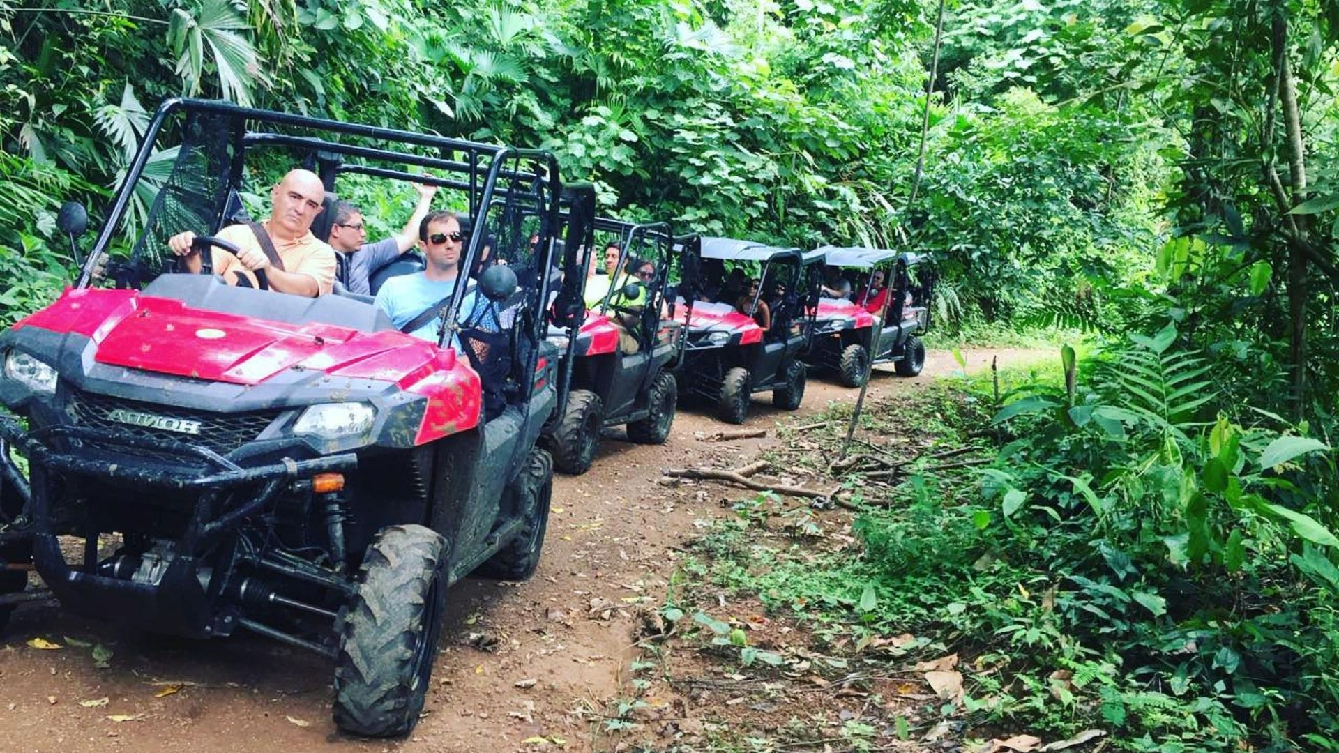 Groups Buggy tours